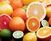 Juicy citrus fruits for winters