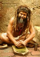 An Indian Sadhu happily grinding away bhang leaves