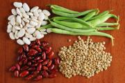 Top 10 foods containing Phytoestrogen - from plant life to human living