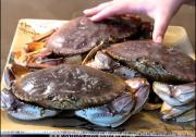 Crab in Red Wine