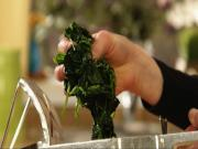 How to Squeeze Spinach