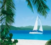 The Caribbean Food Festivals are the added attractions for visiting Caribbean.