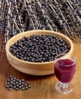 acia berry
