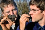 The two botanists sniffed out a truffle treasure in the southwestern region of Germany.