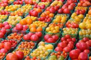 Organic tomatoes are more nutritious than conventional ones.