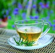 Major Gynostemma tea benefits