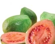 Health Benefits Of Guava Concentrate