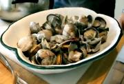 Steamed Manila Clams