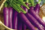Purple carrots offer loads of health benefits.