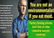James Cameron Asks Environmentalists To Go Vegan
