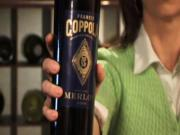 The Feel of Francis Coppola Diamond Collection Merlot 2006