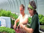 Wegmans Organic Farm