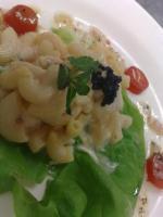 Egg Macaroni Salad - Creamy Egg Starters