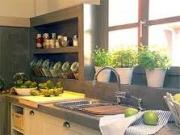plant trees, one of the decorate kitchen ideas