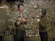 Nuestadt Scottish Ale Review