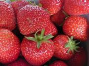 Clean strawberries before consuming