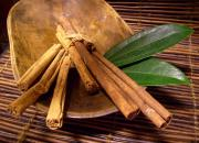 Ayurvedic herb - cinnamon