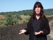 How We Make and Apply Compost (The Journey Blog 7.26.10)