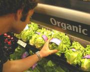 Organic foods are affordable to eat