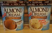 Vegetarian and Vegan Product Review - Almond Dream Ice Cream