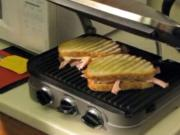 Griddler Panini Maker