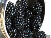 Blackberries - Buying and Storing