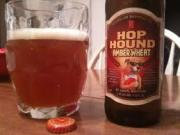 Beer Review: Hop Hound Amber Wheat Michelob
