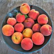 Peaches can be stored easily