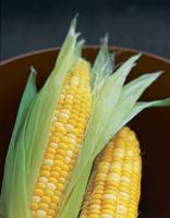 Enjoy sweet corn recipes by freezing sweet corn in some easy ways