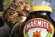 Marmite is the new superfood.