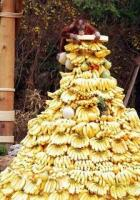 Mountain of bananas