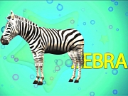 The Animal Alphabet ABC Song | ABC Animals Alphabet Song