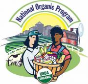 Organic food-the answer to all your needs