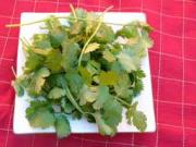Cilantro Medicinal Uses -- Cilantro Leaves