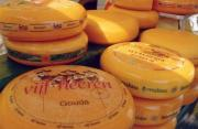 gouda cheese has a mild flavor