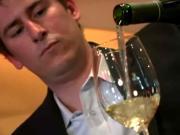 Best Wine Picks