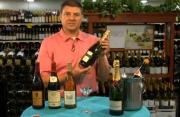 Bottle Styles Of Wines