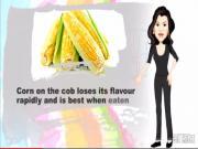 Storing Corn Tips