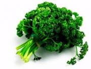 How to keep parsley fresh and moist.