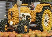Pumpkin Festival of food, games, fun and entertainment