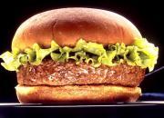 Cucumber Burgers