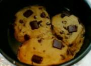 An Overview Of Solar Cooked Chocolate Chip Cookies