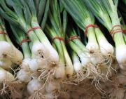 Tips on how to eat flowering onions