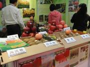 The 2nd International Food & Drink Expo hosted at New Delhi, India