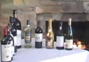 A Guide to Tasting and Enjoying Wine with Gino