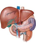 Cleansing the liver is a simple process, which can go a long way in keeping you safe