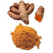 "health benefits of turmeric - The yellow - ""The cleanser fellow"""