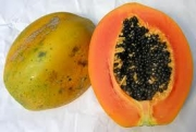 Papaya — Ripe Papaya
