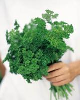 J&D Produce recalls 7000 cases of curly parsley and cilantro due to Salmonella threat