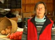 Community Agriculture Trends